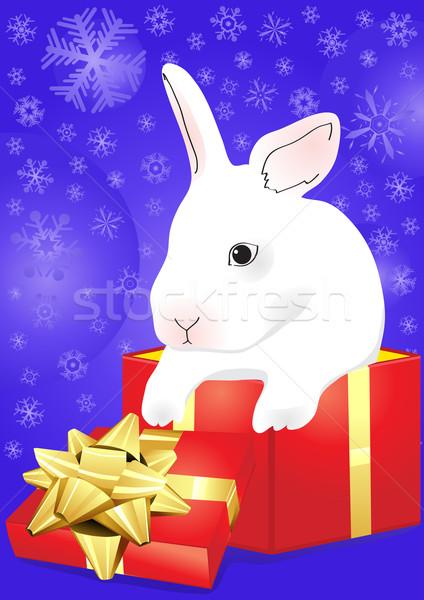 rabbit with blue giftbox Stock photo © pressmaster