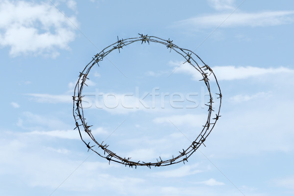 Thorny wreath Stock photo © pressmaster