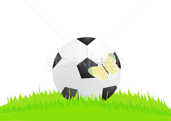 Stockfoto: Bal · vlinder · voetbal · gras · abstract · voetbal