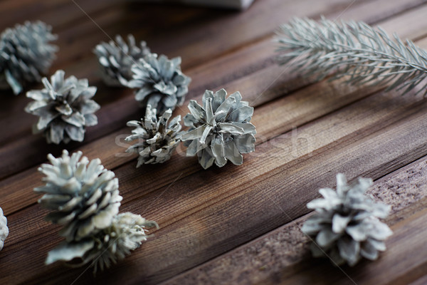Christmas woods Stock photo © pressmaster