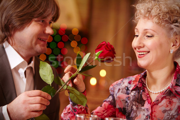 случай изображение красивая женщина глядя красную розу женщину Сток-фото © pressmaster