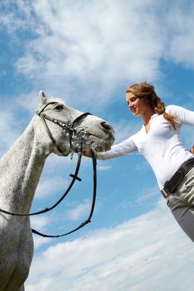 Stock fotó: Ló · törődés · kép · boldog · női · fajtiszta