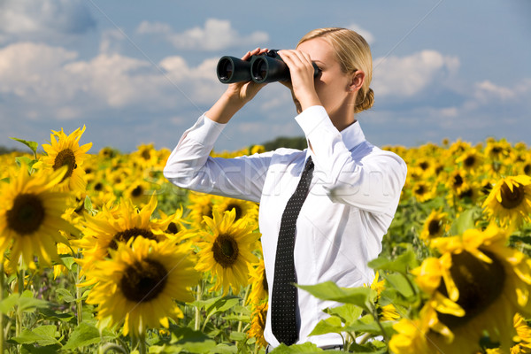 Regarder jumelles portrait blond Homme tournesol Photo stock © pressmaster