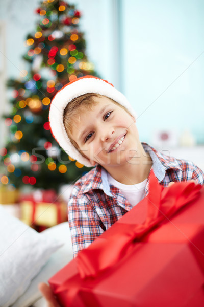 Christmas present Stock photo © pressmaster