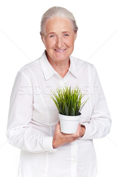 Nagyi növény portré idős női zöld Stock fotó © pressmaster