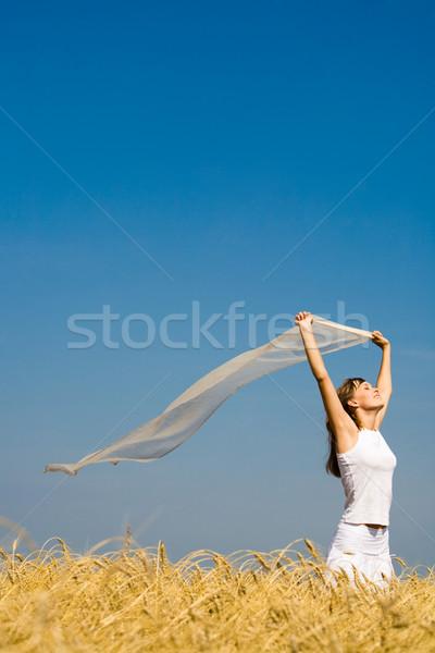 Vento soprar retrato moça bonita peça tecido Foto stock © pressmaster