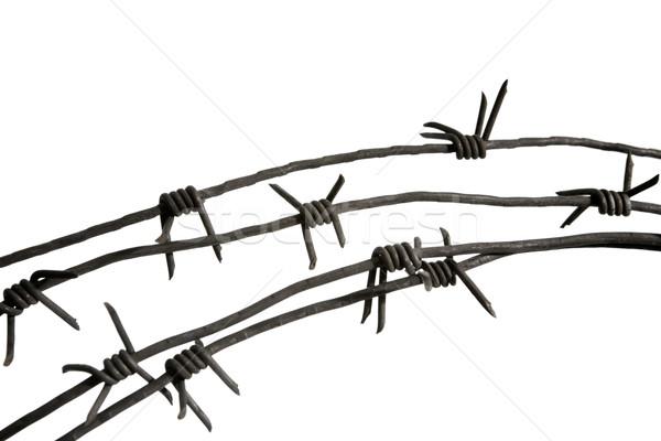 Wire prickles Stock photo © pressmaster