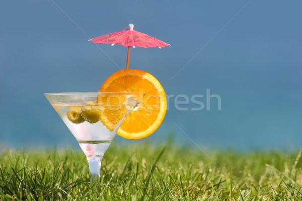 Lata Fotografia martini pomarańczowy plasterka oliwek Zdjęcia stock © pressmaster