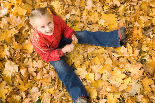 Autumn mood Stock photo © pressmaster
