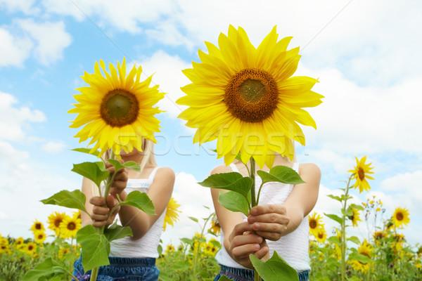 Stockfoto: Achter · zonnebloemen · portret · cute · meisjes · verbergen