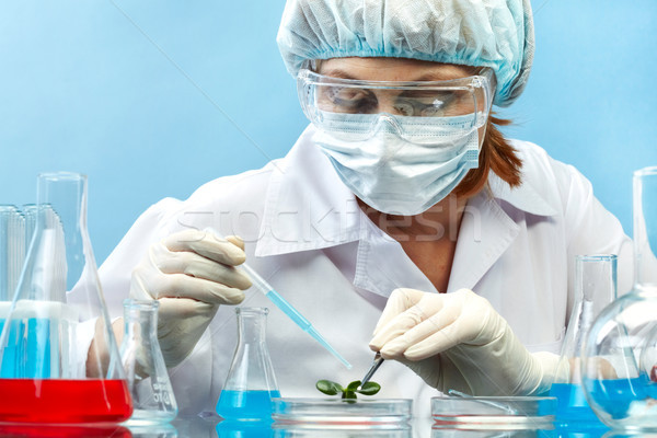 ストックフォト: ラボ · 職場 · 女性 · 研究者 · 忙しい · 勉強