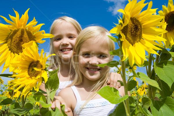 Zdjęcia stock: Bliźnięta · portret · cute · dziewcząt · patrząc · kamery
