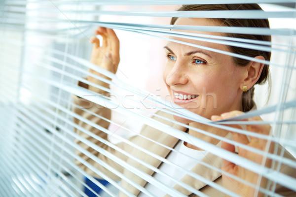 Business vooruitzicht glimlachend zakenvrouw naar uit Stockfoto © pressmaster