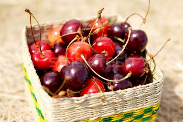 Cherries Stock photo © pressmaster