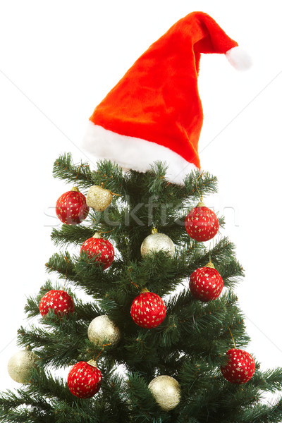 Christmas tree Stock photo © pressmaster