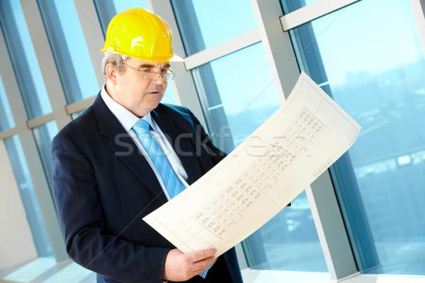 Foreman Stock photo © pressmaster