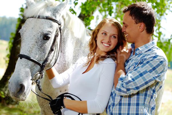 Stock fotó: Románc · kép · boldog · nő · fajtiszta · ló