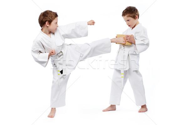 Karatê crianças gêmeo meninos um Foto stock © pressmaster