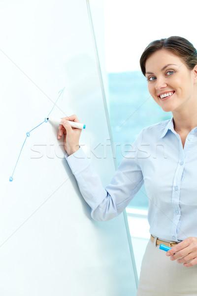 Erklärung Porträt jungen Geschäftsfrau schauen Kamera Stock foto © pressmaster