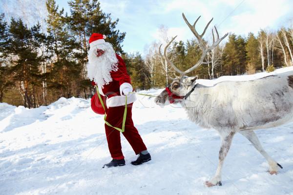 Santa Stock photo © pressmaster