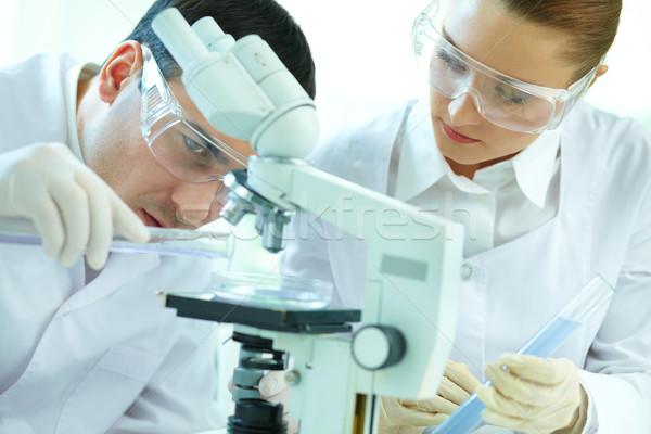 Scientific scrutiny Stock photo © pressmaster