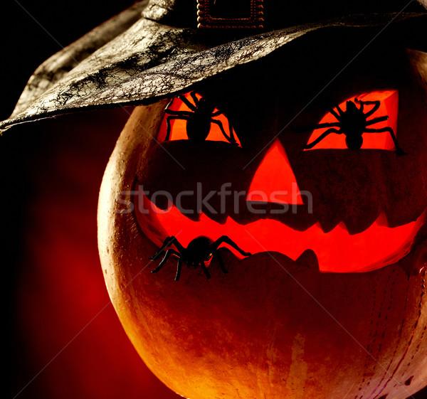 Halloween  Stock photo © pressmaster