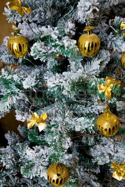 Christmas tree Stock photo © pressmaster