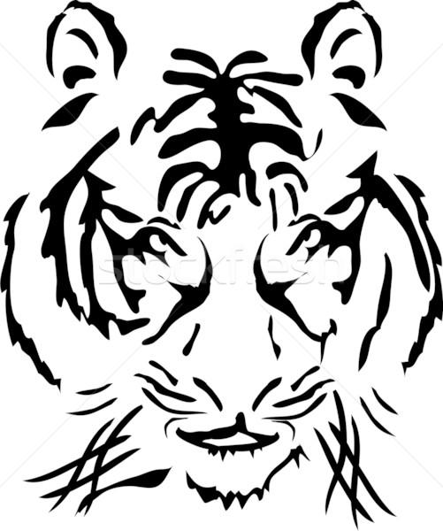 bengal tiger head       Stock photo © pressmaster