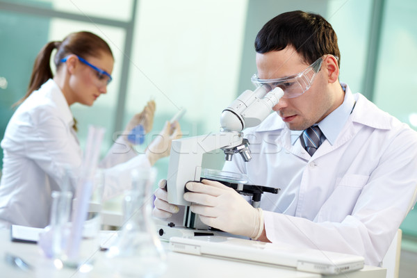 Scientific research Stock photo © pressmaster
