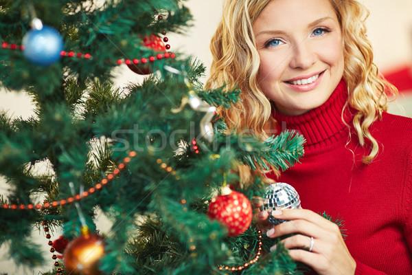Female in red pullover Stock photo © pressmaster