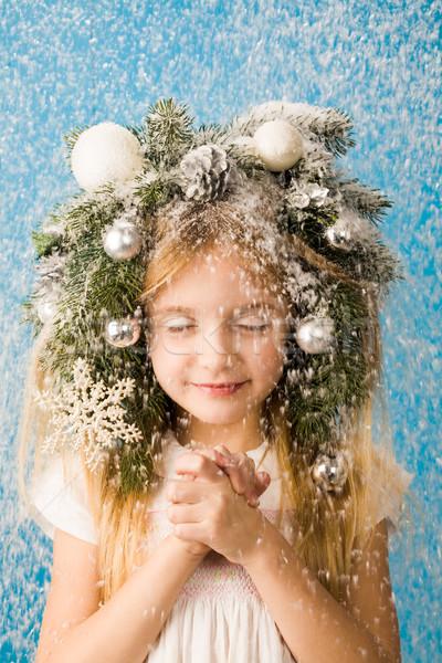 Winter fairy tale Stock photo © pressmaster