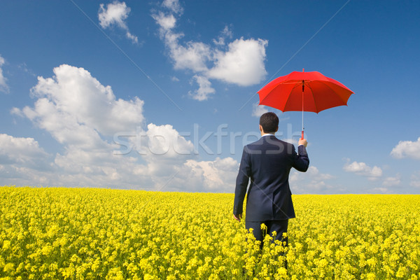 Man with umbrella Stock photo © pressmaster