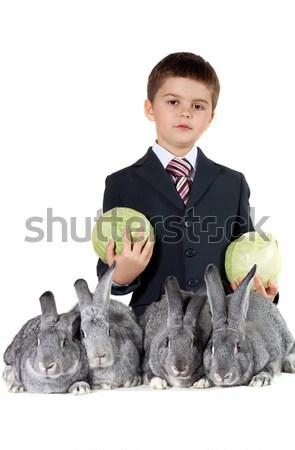 Boy and rabbits Stock photo © pressmaster