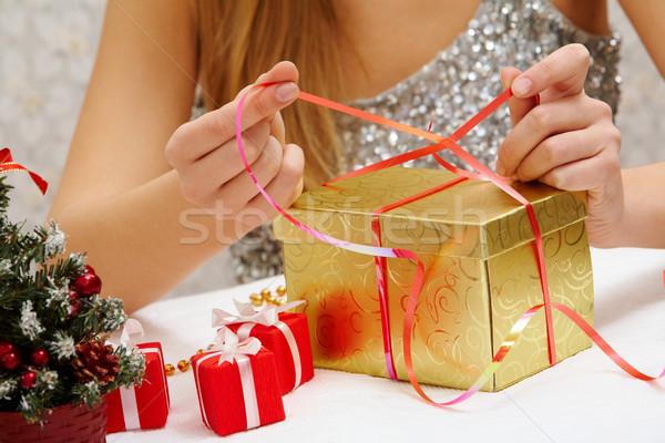 New Year preparations Stock photo © pressmaster