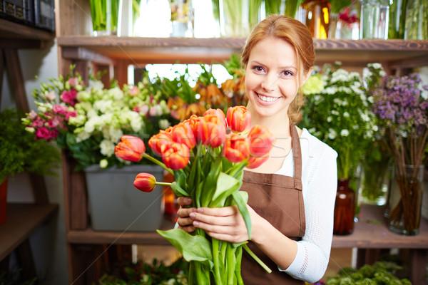 First tulips Stock photo © pressmaster