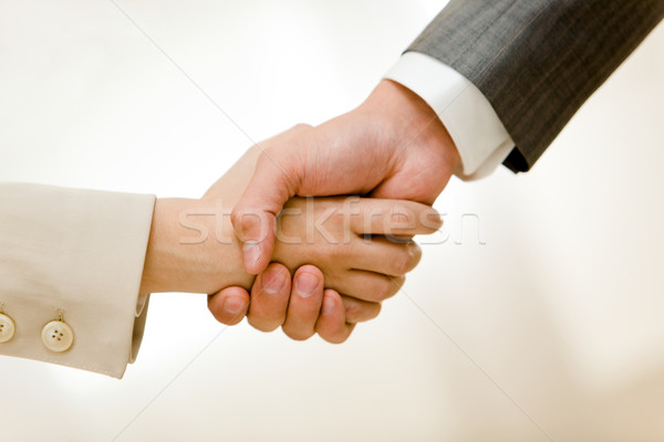 Handshake of partners Stock photo © pressmaster
