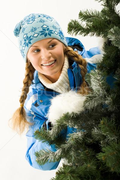Kış portre genç güzel kadın noel ağacı kadın Stok fotoğraf © pressmaster