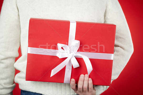 Giftbox in hands Stock photo © pressmaster