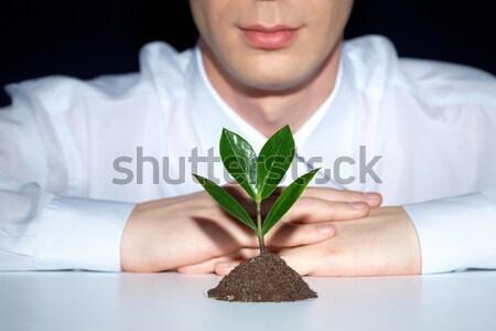 Stockfoto: Plant · foto · handen · jonge · business · palm