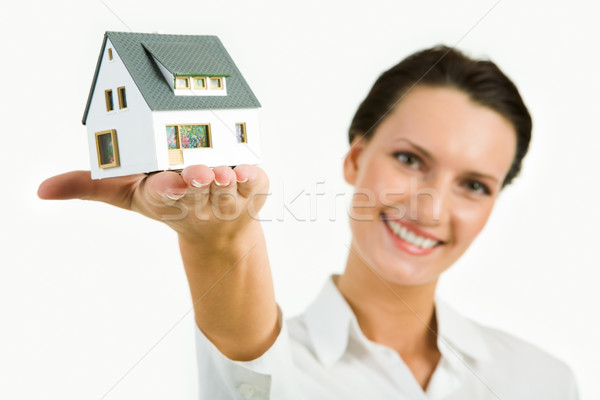 Stock photo: Model of house