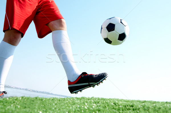 Hitting the ball Stock photo © pressmaster