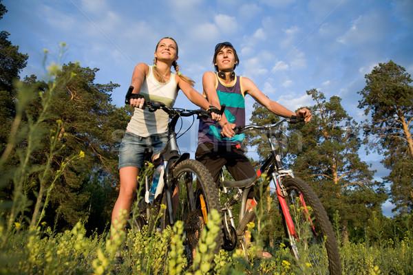 Stock fotó: élvezi · nyár · nap · pár · biciklik · vidék