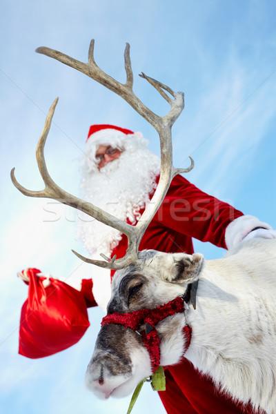 Hazır noel baba ren geyiği adam doğa kış Stok fotoğraf © pressmaster