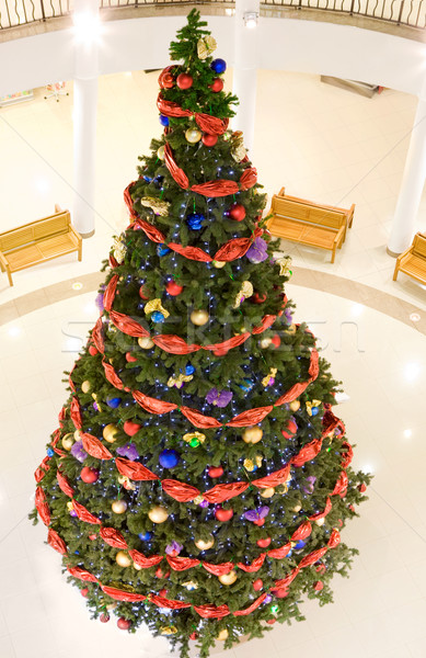 Christmas firtree in the mall Stock photo © pressmaster