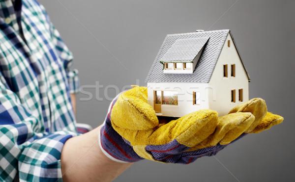 House on palm Stock photo © pressmaster