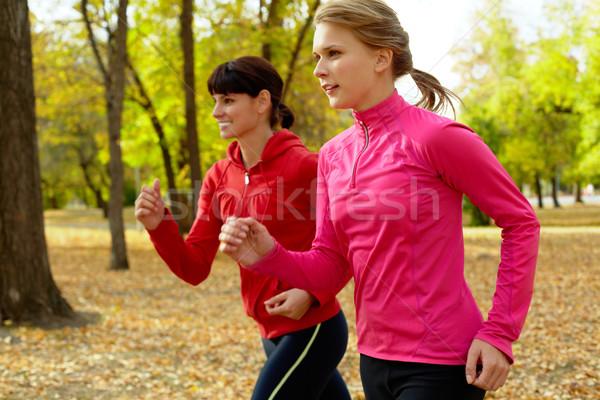 Mattina eseguire due giovani donne jogging autunno Foto d'archivio © pressmaster