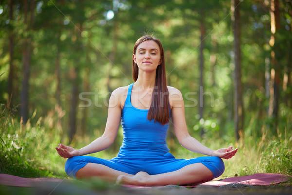 Сток-фото: йога · парка · портрет · женщину · сидят