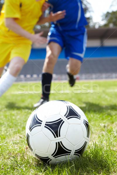 Ball in grass Stock photo © pressmaster