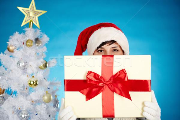 Christmas surprise Stock photo © pressmaster