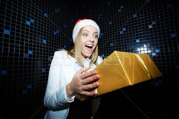 örvend nő portré csinos üzletasszony mikulás sapka Stock fotó © pressmaster